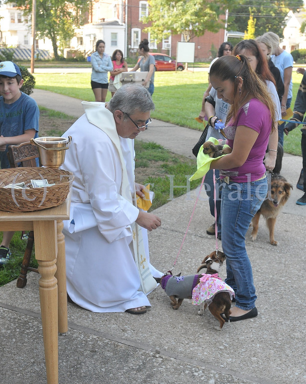 Description of . St. Francis of Assisi Church held the Blessing of the Animals on their church grounds on Saturday morning.  Father Jim Goerner blessed over 80 animals during the event.  Saturday, October 5, 2013.  Photos by Adrianna Hoff/Times Herald Staff.