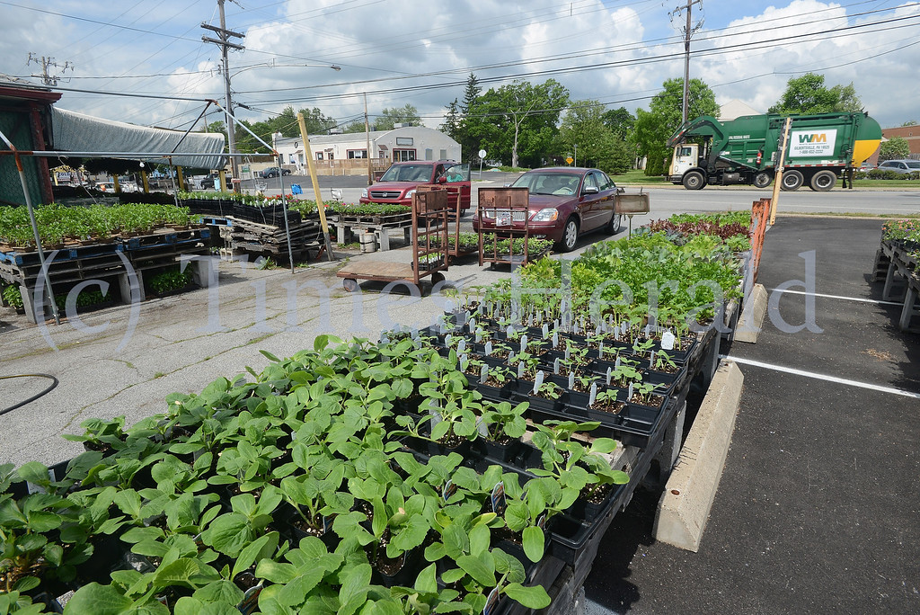. Harry\'s Produce on Main St. in Lower Providence Township.  Thursday, May 15, 2014.  Photo by Adrianna Hoff/Times Herald Staff.